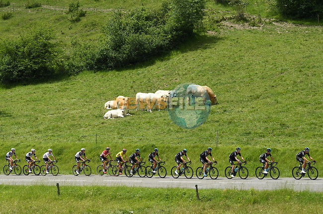 Team Sky on the front of the peloton during Stage 6 of the Criterium du Dauphine 2017, running 147.5km from Parc des Oiseaux - Villars-les-Dombes to La Motte-Servolex, France. 9th June 2017. <br /> Picture: ASO/A.Broadway | Cyclefile<br /> <br /> <br /> All photos usage must carry mandatory copyright credit (&copy; Cyclefile | ASO/A.Broadway)