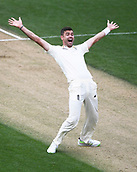 23rd March 2018, Eden Park, Auckland, New Zealand; International Test Cricket, New Zealand versus England, day 2;  James Anderson appeals successfully for a LBW decision to dismiss Williamson