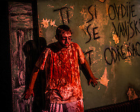 A patient at the Mental Hospital attraction at Reapers Realm