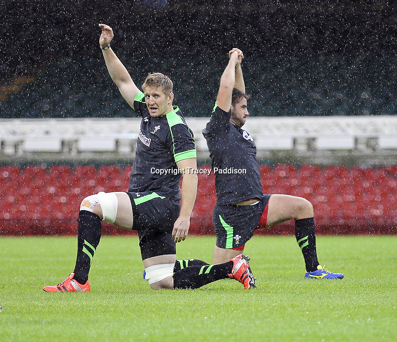 Monday 3 November 2014<br />Pictured: Bradley Davies<br />Re: Wales rugby squad train for the Dove Men series autumn internationals on the new pitch at the Millennium Stadium, Cardiff, United Kingdom.