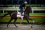 September 2, 2020: Donna Veloce exercises as horses prepare for the 2020 Kentucky Derby and Kentucky Oaks at Churchill Downs in Louisville, Kentucky. The race is being run without fans due to the coronavirus pandemic that has gripped the world and nation for much of the year. Evers/Eclipse Sportswire/CSM