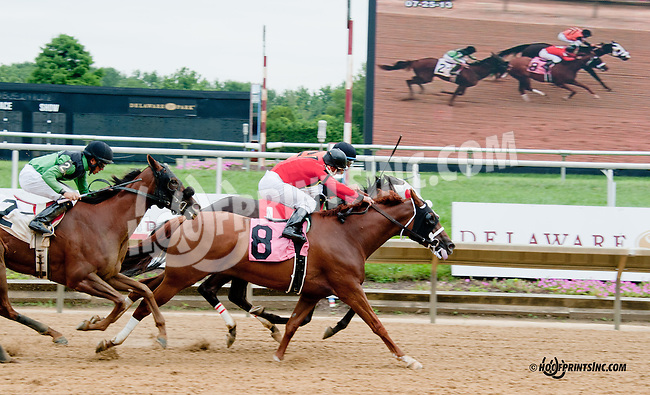 Apalachee Song winning at Delaware Park on 7/25/13