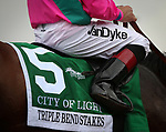 ARCADIA, CA MARCH 10: City of Light  after taking the Triple Bend Handicap (Grade I) on March 10, 2018 at Santa Anita Park in Arcadia, CA (Photo by Chris Crestik/ Eclipse Sportswire/ Getty Images)