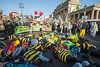 Mehrere zehntausend Menschen demonstrierten am Samstag den 19. Januar 2019 in Berlin unter dem Motto &bdquo;Wir haben es statt!&ldquo; fuer eine Wende in der Agrarpolitik. Sie forderten eine Abkehr von der Subventionierung der industriellen Landwirtschaft, hin zu einer Unterstuetzung der kleinen Betriebe. &quot;Schluss mit den Steuermilliarden an die Agrarindustrie!&quot; und &quot;Subventionen nur noch fuer umwelt- und klimaschonende Landwirtschaft! Oeffentliche Gelder nur noch fuer artgerechte Tierhaltung!&quot;.<br /> An dem Demonstrationszug nahmen Bauern mit 141 Traktoren teil.<br /> Im Bild: Mitglieder der BUND-Jugend aus ganz Deutschland protestieren gegen den Einsatz von Pestiziden in der Landwirtschaft.<br /> 19.1.2019, Berlin<br /> Copyright: Christian-Ditsch.de<br /> [Inhaltsveraendernde Manipulation des Fotos nur nach ausdruecklicher Genehmigung des Fotografen. Vereinbarungen ueber Abtretung von Persoenlichkeitsrechten/Model Release der abgebildeten Person/Personen liegen nicht vor. NO MODEL RELEASE! Nur fuer Redaktionelle Zwecke. Don't publish without copyright Christian-Ditsch.de, Veroeffentlichung nur mit Fotografennennung, sowie gegen Honorar, MwSt. und Beleg. Konto: I N G - D i B a, IBAN DE58500105175400192269, BIC INGDDEFFXXX, Kontakt: post@christian-ditsch.de<br /> Bei der Bearbeitung der Dateiinformationen darf die Urheberkennzeichnung in den EXIF- und  IPTC-Daten nicht entfernt werden, diese sind in digitalen Medien nach &sect;95c UrhG rechtlich geschuetzt. Der Urhebervermerk wird gemaess &sect;13 UrhG verlangt.]