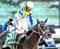 LOUISVILLE, KY - MAY 06: John Velazquez celebrates after winning the Kentucky Derby aboard Always Dreaming #5 on Kentucky Derby Day at Churchill Downs on May 6, 2017 in Louisville, Kentucky. (Photo by Jessica Morgan/Eclipse Sportswire/Getty Images)