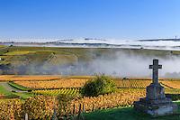 France, Cher (18), région du Berry, région du Sancerrois, Bué, et le vignoble en automne, brumes matinales // France, Cher, Sancerrois region, Bue and the vineyard in autumn, morning mists