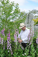 Terry Baker with Digitalis pupurea 'Gloxinioides'