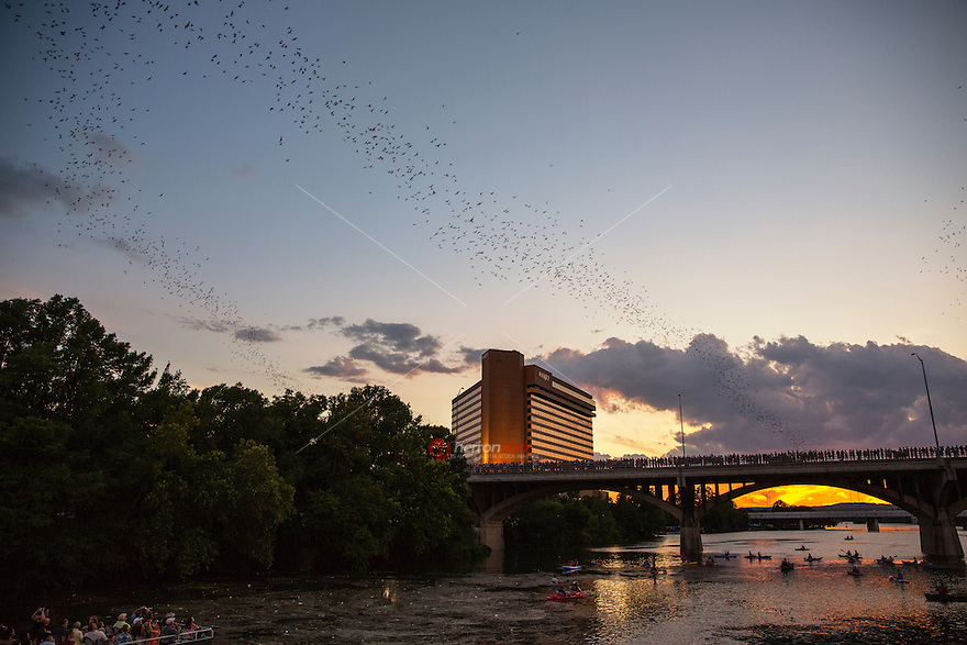 Congress Avenue Bridge shelters the largest urban bat colony in North America. Each night 1.5 million bats fly out during dusk.