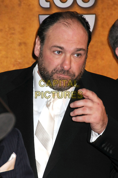 27 January 2008 - Los Angeles, California -. 14th Annual Screen Actors Guild Awards held at the Shrine Auditorium. Photo Credit: Byron Purvis/AdMedia