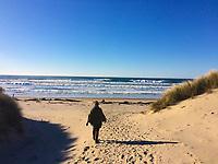 The beach at Nehalem Bay State Park