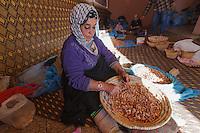 Africa,Morocco,Marrakech, Souss Massa Draà,karitè preparation