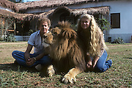 Vassouras, district of Rio de Janeiro, Brazil. 1981.  A family in Africa is besieged by a group of lions, driven mad by the drought. They have to survive multiple attacks but some of their colleagues are eaten by the lions. From the film Savage Harvest, directed by Robert E. Collins. Photo of the actress Tana Helfer and her father Ralph Helfer the famous animal trainer who directed all the stunts with the animals in the movie.