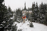 hikers, hiking, snow, November, winter, day, subalpine forest below Pear Lake, Rocky Mountain National Park, Colorado, Rocky Mountains, USA
