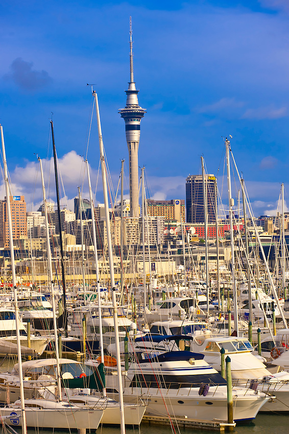 The Westhaven Harbor (with the Sky Tower behind), Auckland, New Zealand
