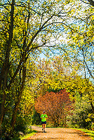 Man jogging on the Highline Canal path on an Autumn afternoon, Littleton, Colorado USA.
