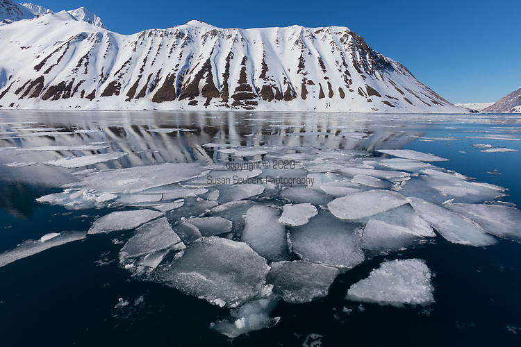 Hornsund, Svalbard, Norway, Europe