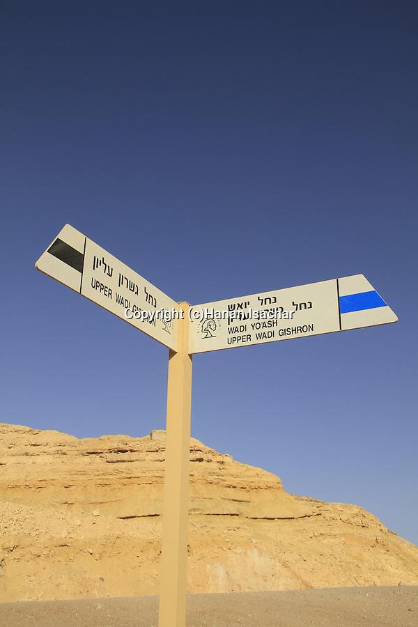 Israel, Eilat mountains, Wadi Gishron at the foothill of Mount Yoash