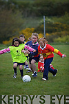All eyes on the ball - l-r; Valentia's Lil Kelly & Vikki McCarthy with Ashling O'Shea from Valentia.