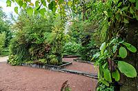 France, Chaumont-sur-Loire, Festival des Jardins 2013, derrière le potager du domaine les murs végétaux inventés par Patrick Blanc ont été conservés depuis 1994