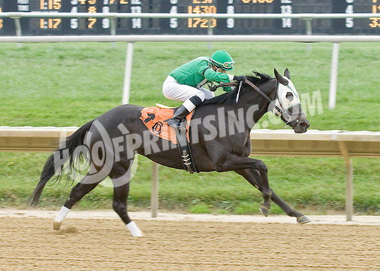 Rock On Thelma winning at Delaware Park on 11/3/12...