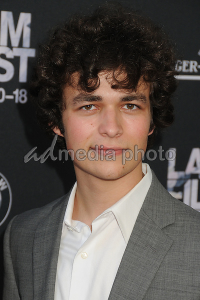 "10 June 2015 - Los Angeles, California - Donald Monroe. LA Film Festival 2015 Opening Night Premiere of ""Grandma"" held at Regal Cinemas LA Live. Photo Credit: Byron Purvis/AdMedia"