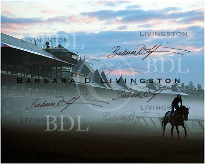 Saratoga, Before Dawn.  1991. Saratoga Race Course, Saratoga Racetrack, beautiful horse racing, Thoroughbred racing, horse, equine, racehorse, morning mood