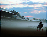 Saratoga, Before Dawn.  1991. Saratoga Race Course, Saratoga Racetrack, beautiful horse racing, Thoroughbred racing, horse, equine, racehorse, morning mood