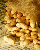 Peanuts on U.S. currency, it costs peanuts, cheap