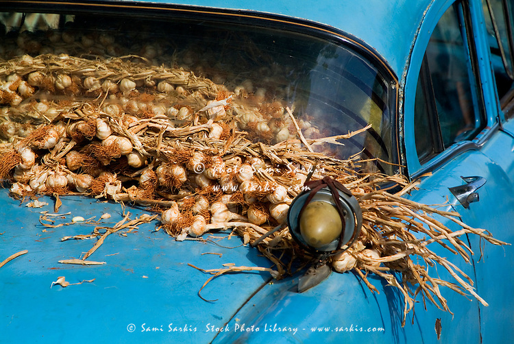 Classic American car with trailer full of garlic for sale in Vinales, Pinar del Rio Province, Cuba.