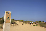 Israel, Southern Coastal Plain, Dunes at Nahal Sorek National Park