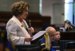 Nevada Sen. Debbie Smith, D-Sparks, works on the Senate floor at the Legislative Building in Carson City, Nev., on Wednesday, May 22, 2013. <br /> Photo by Cathleen Allison