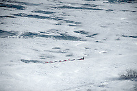 Iditarod front running musher Lance Mackey races along Bering Sea coast near Golovin, Alaska