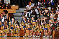 21 January 2012:  FIU's mini-Golden Dazzlers entertain the crowd during a break in the action as the Florida Atlantic University Owls defeated the FIU Golden Panthers, 66-64, at the U.S. Century Bank Arena in Miami, Florida.