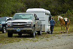 Chevy, horse trailer and horse