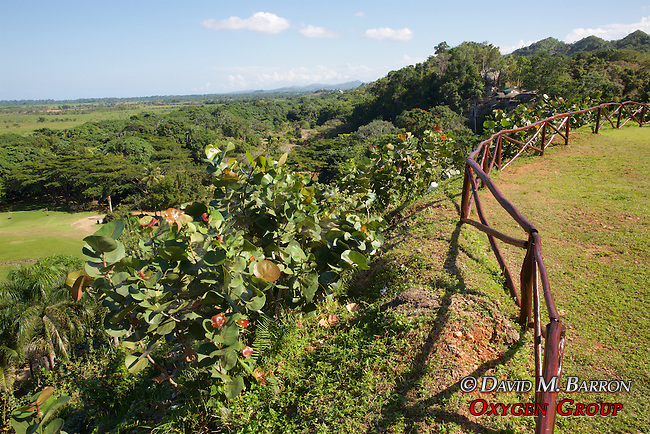 View From Altos De Caño Honda