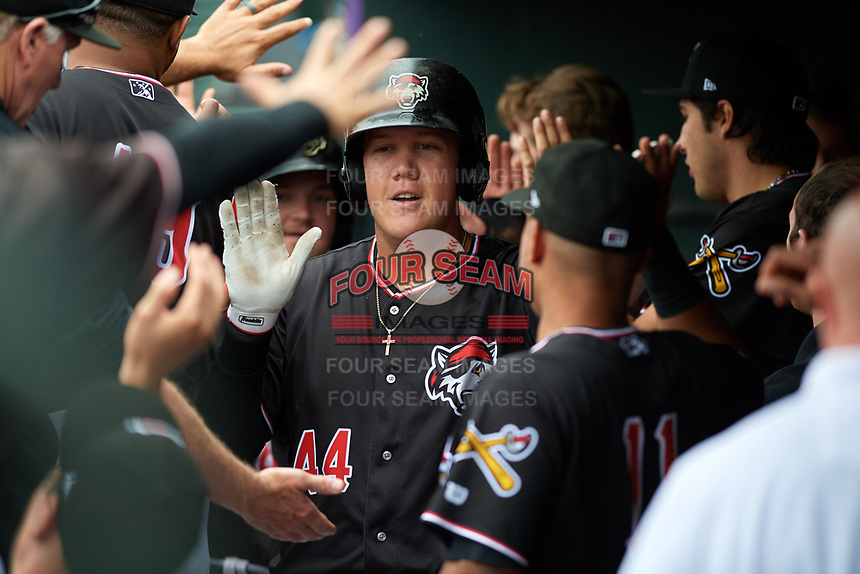 Erie SeaWolves first baseman Josh Lester (44) high fives with teammates in the dugout after hitting a home run in the bottom of the second inning during a game against the New Hampshire Fisher Cats on June 20, 2018 at UPMC Park in Erie, Pennsylvania.  New Hampshire defeated Erie 10-9.  (Mike Janes/Four Seam Images)
