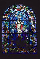 Europe/France/Pays de la Loire/44/Loire-Atlantique/Monnières: Eglise - Vitrail de Gruber sur le thème de la viticulture - AOC Muscadet - Scène de vendanges manuelles