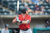 Jordan Luplow (24) of the Indianapolis Indians at bat against the Columbus Clippers at Huntington Park on June 17, 2018 in Columbus, Ohio. The Indians defeated the Clippers 6-3.  (Brian Westerholt/Four Seam Images)