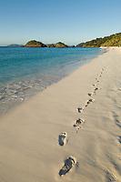 Foot prints in the sand.Trunk Bay, St John.Virgin Islands National Park
