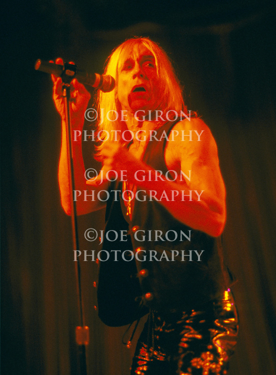 Various live photographs of musician, Iggy Pop.