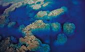 Massifs coralliens, Lifou