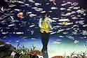 Magic performance at Sunshine Aquarium in Tokyo