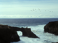People standing on the Headlands arch, Mendocino California