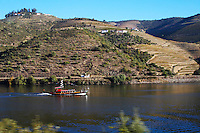 passenger ferry boat vineyards douro portugal