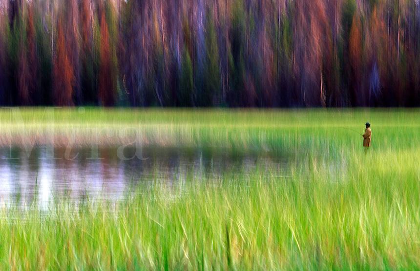 Blurred fisherman casting from marsh grass.