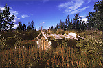 Abandoned trapper's cabin near Haines junction, Yukon Tewrritory, Canada