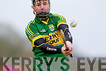 John Egan Kerry in action against  Kildare in the National Hurling League at Abbeydorney on Sunday.