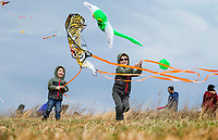 NWA Democrat-Gazette/BEN GOFF @NWABENGOFF<br /> Coleman Weatherford (left), 3, and brother Aidan Weatherford, 6, of Bentonville launch their tiger kite Saturday, March 23, 2019, during the 29th annual Eureka Springs Kite Festival hosted by Turpentine Creek Wildlife Refuge in Eureka Springs. The free family event included kite making and kites for sale from Keleidokites in Eureka Springs and a variety of food trucks and entertainment. Strong wind kept dozens of kites flying high at any given time.