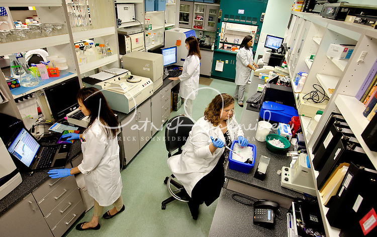 Photography inside the Molecular Biology Lab inside the Cannon Research Center Laboratories at Carolinas Medical Center, in Charlotte, North Carolina.