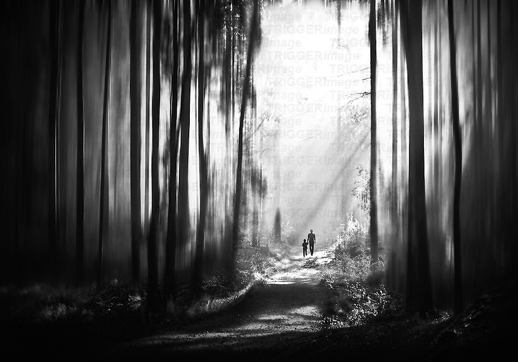 Father and child walking through woodland with strong sunlight